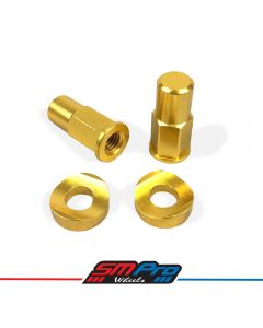 SM Pro Security Bolt - Rim Lock Kit (Gold Anodised)